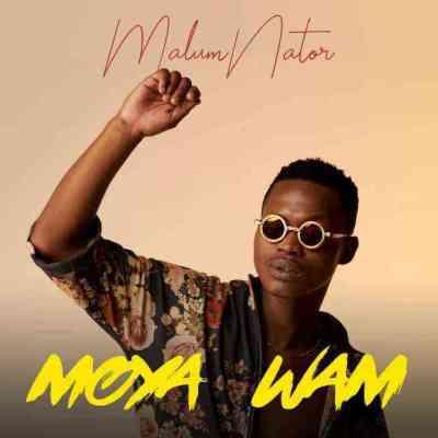 MalumNator, De Mthuda & Ntokzin – Iy'phuzo Mp3 download